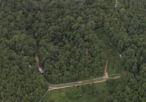 Le nouvel habitat de Oscar, Apang, Kecil et Arkana